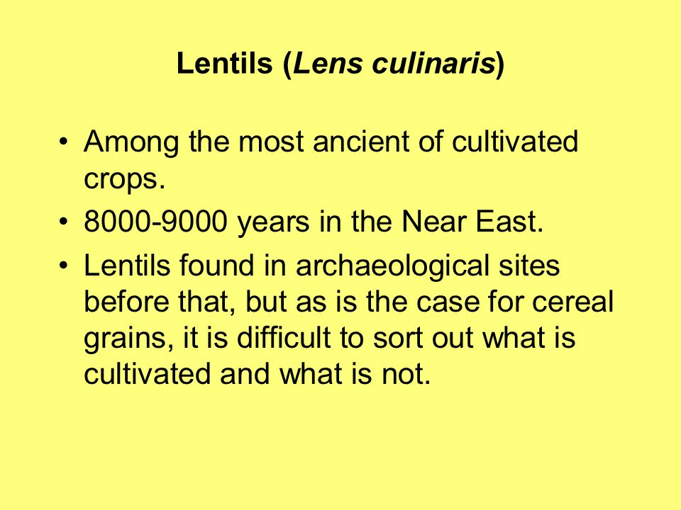 Lentils (Lens culinaris) Among the most ancient of cultivated crops.