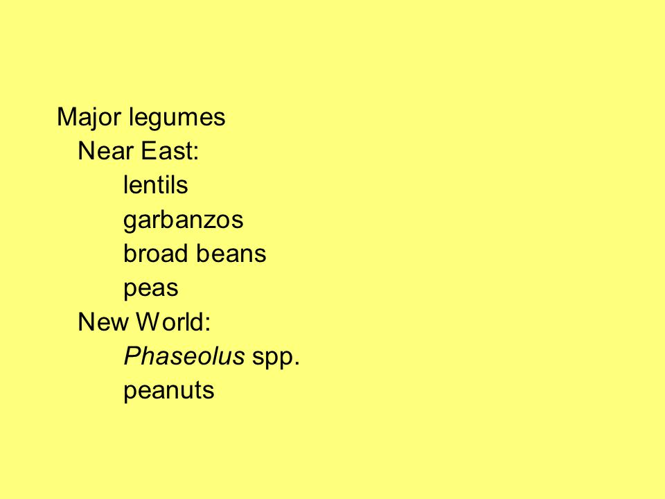 Major legumes Near East: lentils garbanzos broad beans peas New World: Phaseolus spp. peanuts