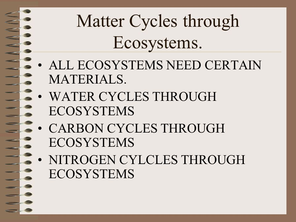 Matter Cycles through Ecosystems.ALL ECOSYSTEMS NEED CERTAIN MATERIALS.