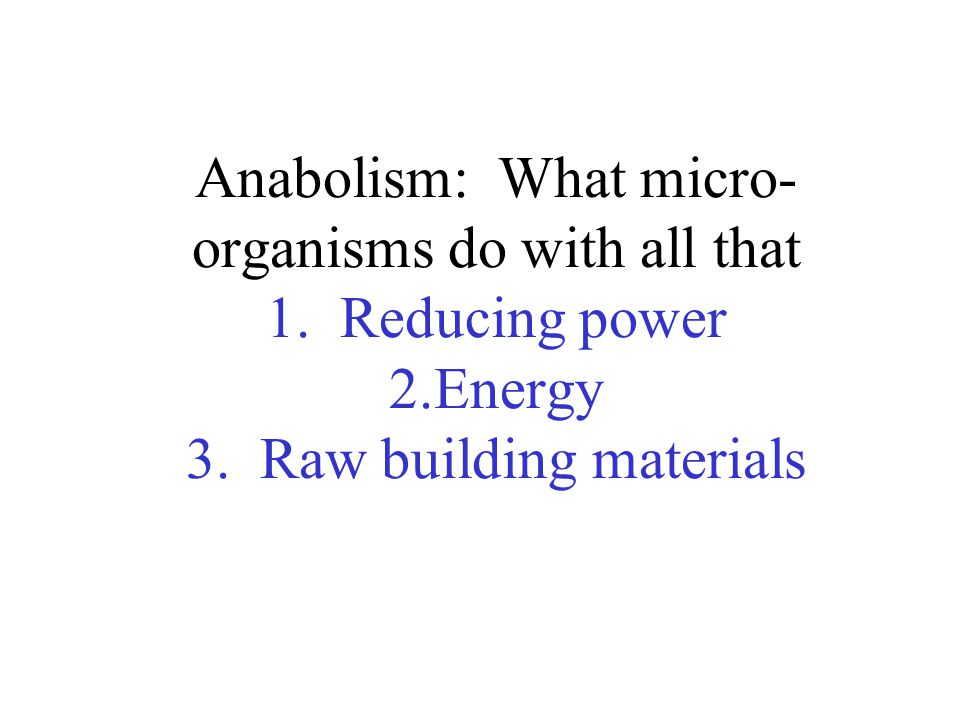 Anabolism: What micro- organisms do with all that 1.