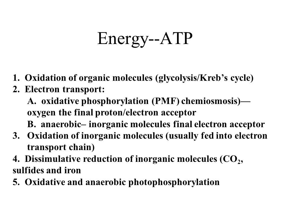 Energy--ATP 1. Oxidation of organic molecules (glycolysis/Kreb's cycle) 2.