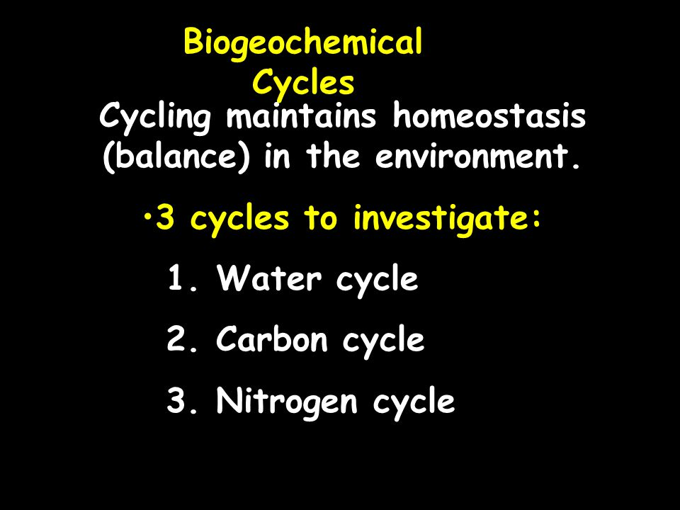 Biogeochemical Cycles Cycling maintains homeostasis (balance) in the environment. 3 cycles to investigate: 1. Water cycle 2. Carbon cycle 3. Nitrogen