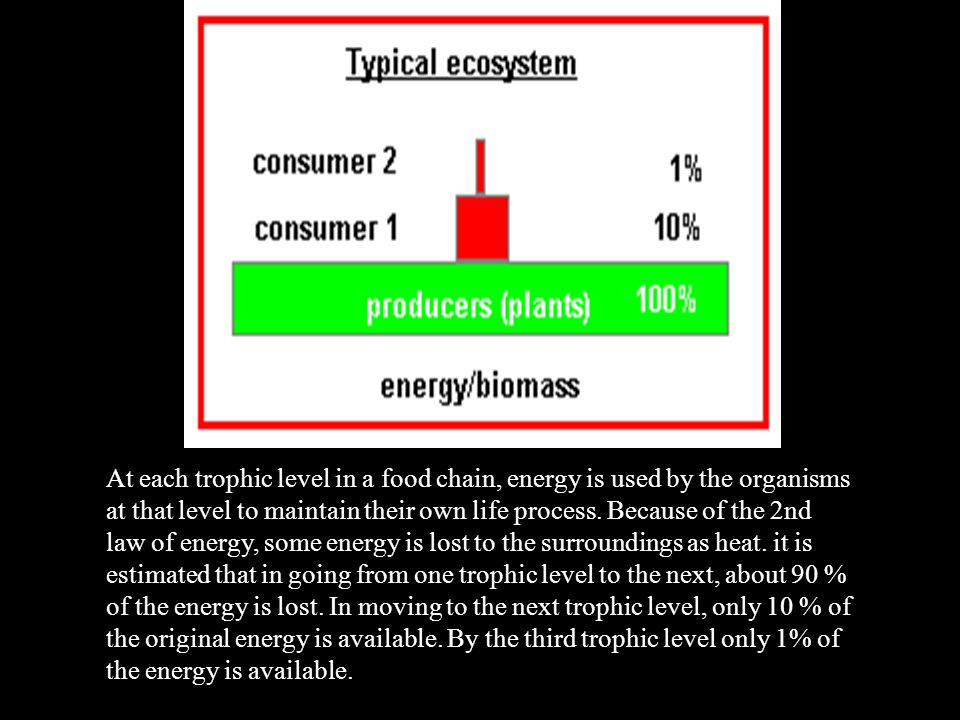 At each trophic level in a food chain, energy is used by the organisms at that level to maintain their own life process. Because of the 2nd law of ene
