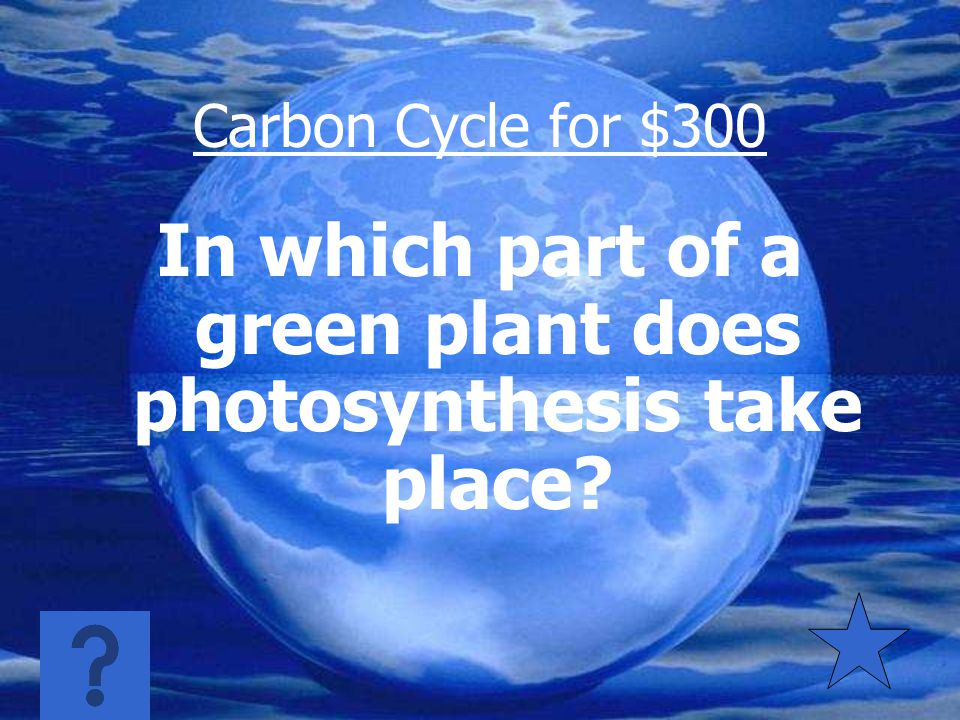 Carbon Cycle for $200 Carbon dioxide