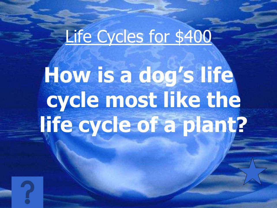 Life Cycles for $300 Egg, nymph, adult