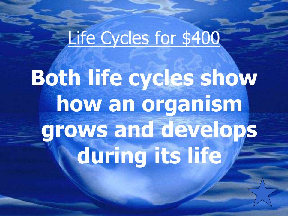 Life Cycles for $400 How is a dog's life cycle most like the life cycle of a plant?