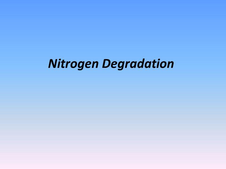 Nitrogen Degradation