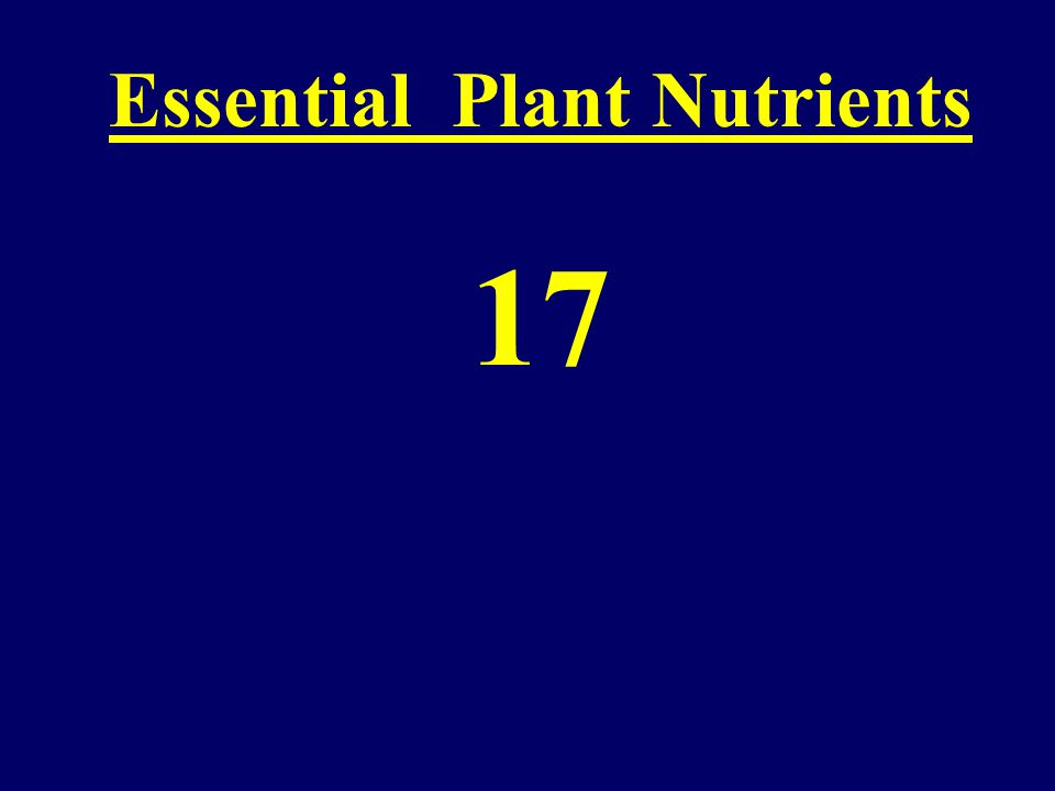 "Reduction of Plant Diseases Using Nutrients ""Fertilizer Labels-A Foreign Language"" Jerald E. Wheeler Plant Pathologist/Agronomist Winfield Solutions,"