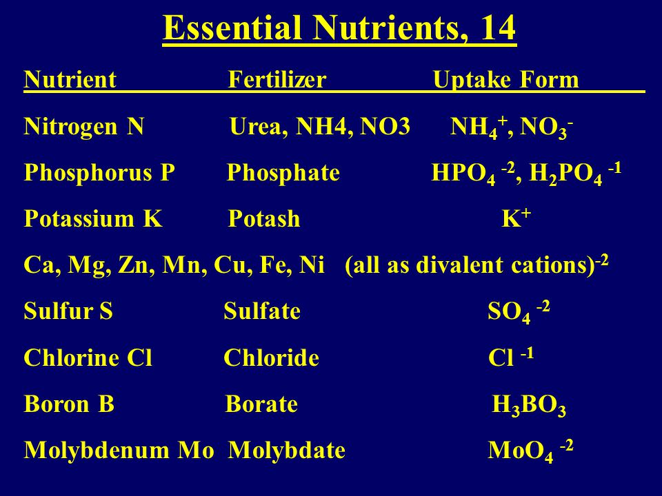 Nutrients: 3 of 17 Carbon C (Carbon Fixation, Photosynthesis) Oxygen O Hydrogen H Mainly from air and water