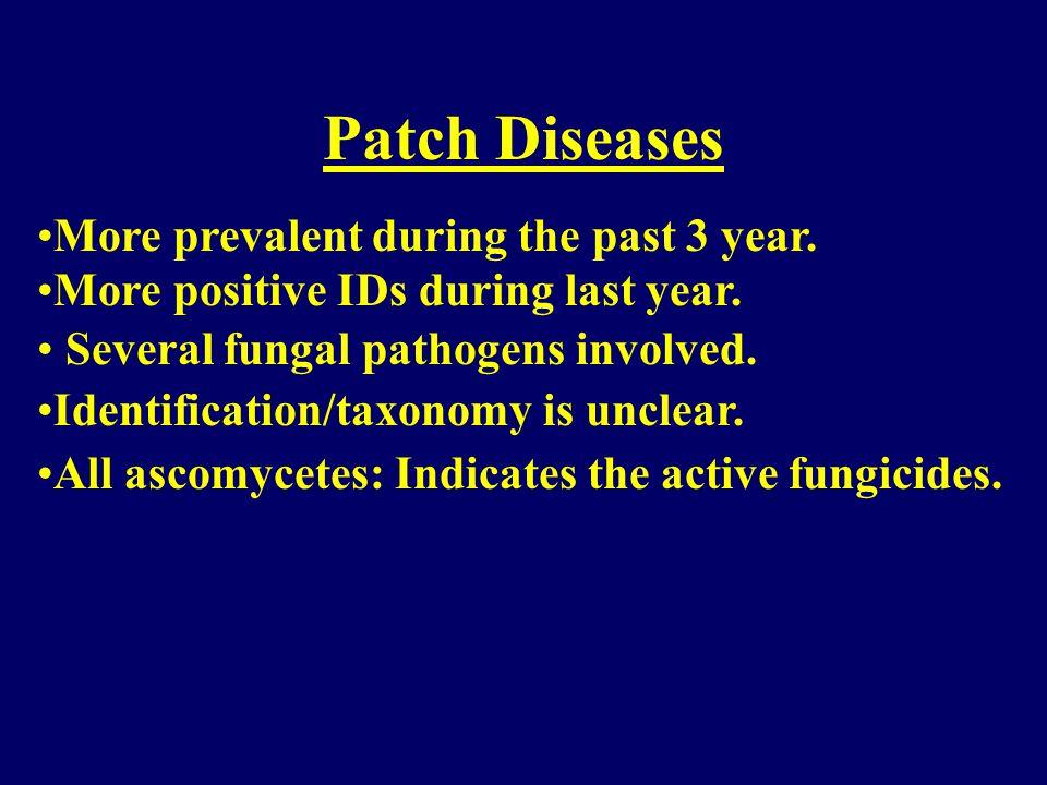Major Turf Disease Problems Turfgrass patch diseases Pythium blight Dollar spot Fusarium blight
