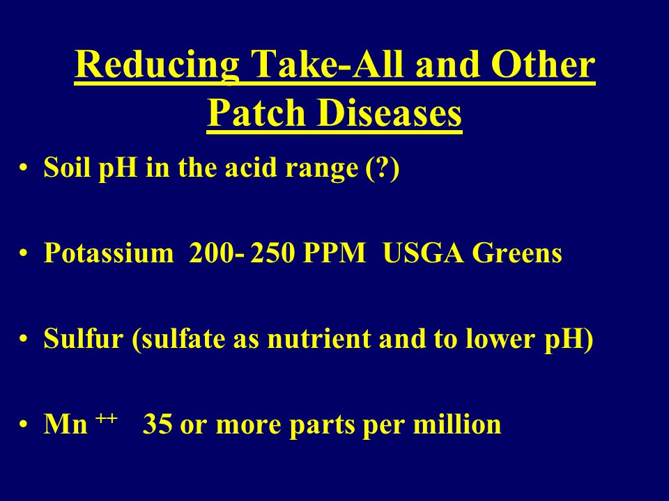 Turfgrass Patch Diseases Summer Patch Fescues, Poa, Bentgrass Magnaporthe poae