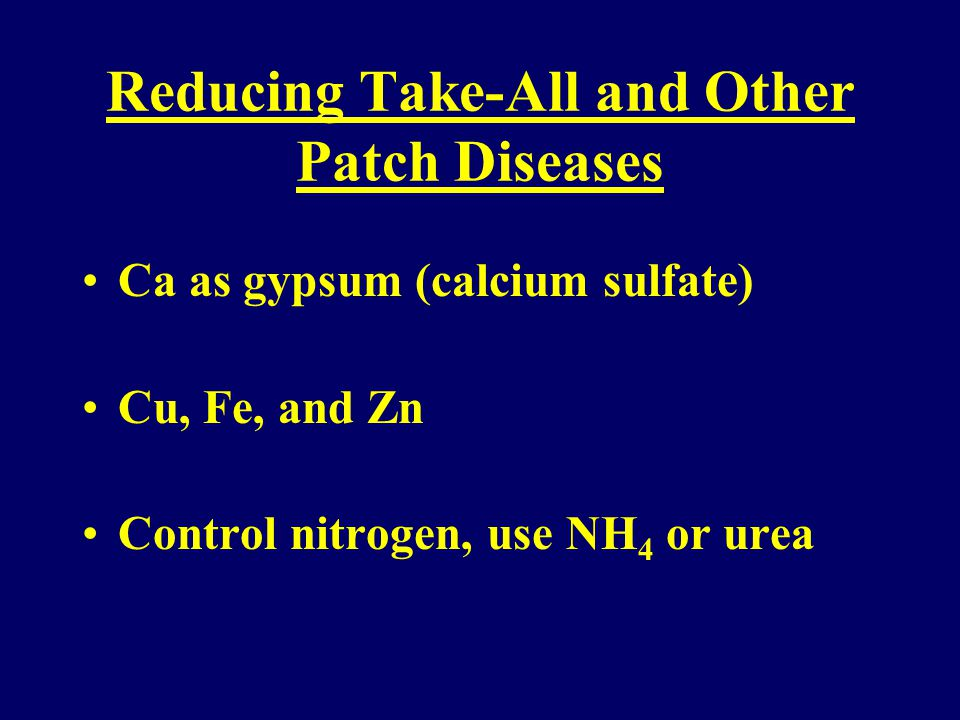 Reducing Take-All and Other Patch Diseases Soil pH in the acid range ( ) Potassium 200- 250 PPM USGA Greens Sulfur (sulfate as nutrient and to lower pH) Mn ++ 35 or more parts per million
