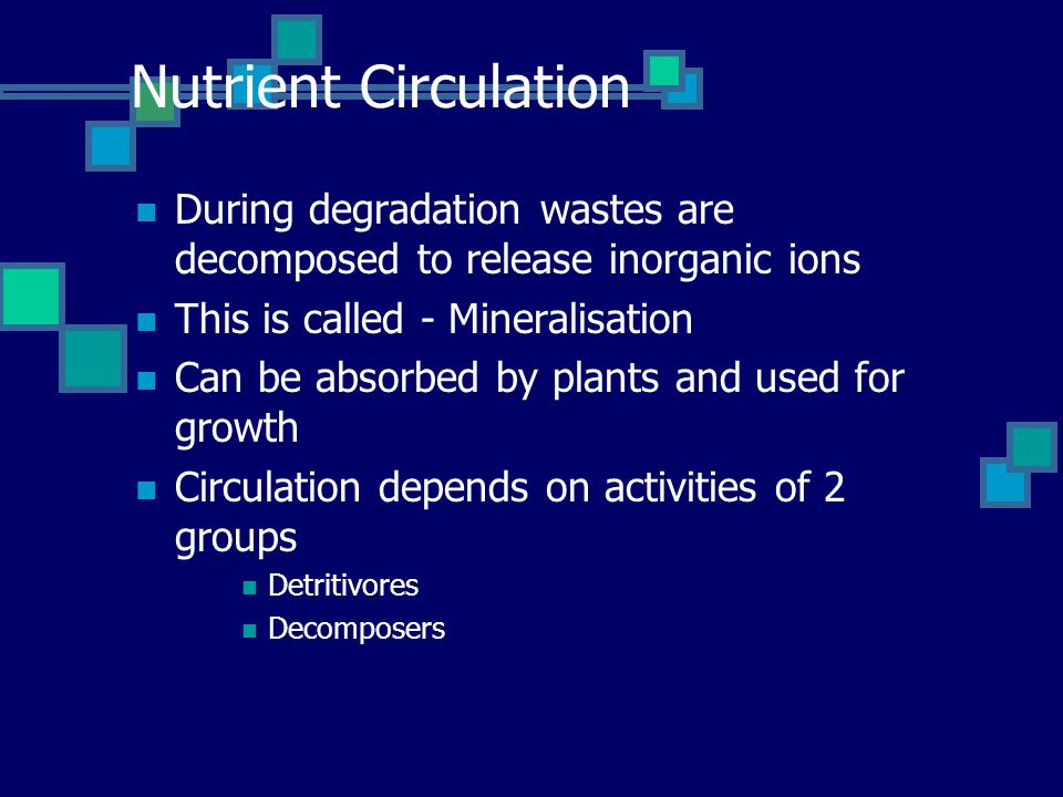 Nutrient Circulation During degradation wastes are decomposed to release inorganic ions This is called - Mineralisation Can be absorbed by plants and used for growth Circulation depends on activities of 2 groups Detritivores Decomposers