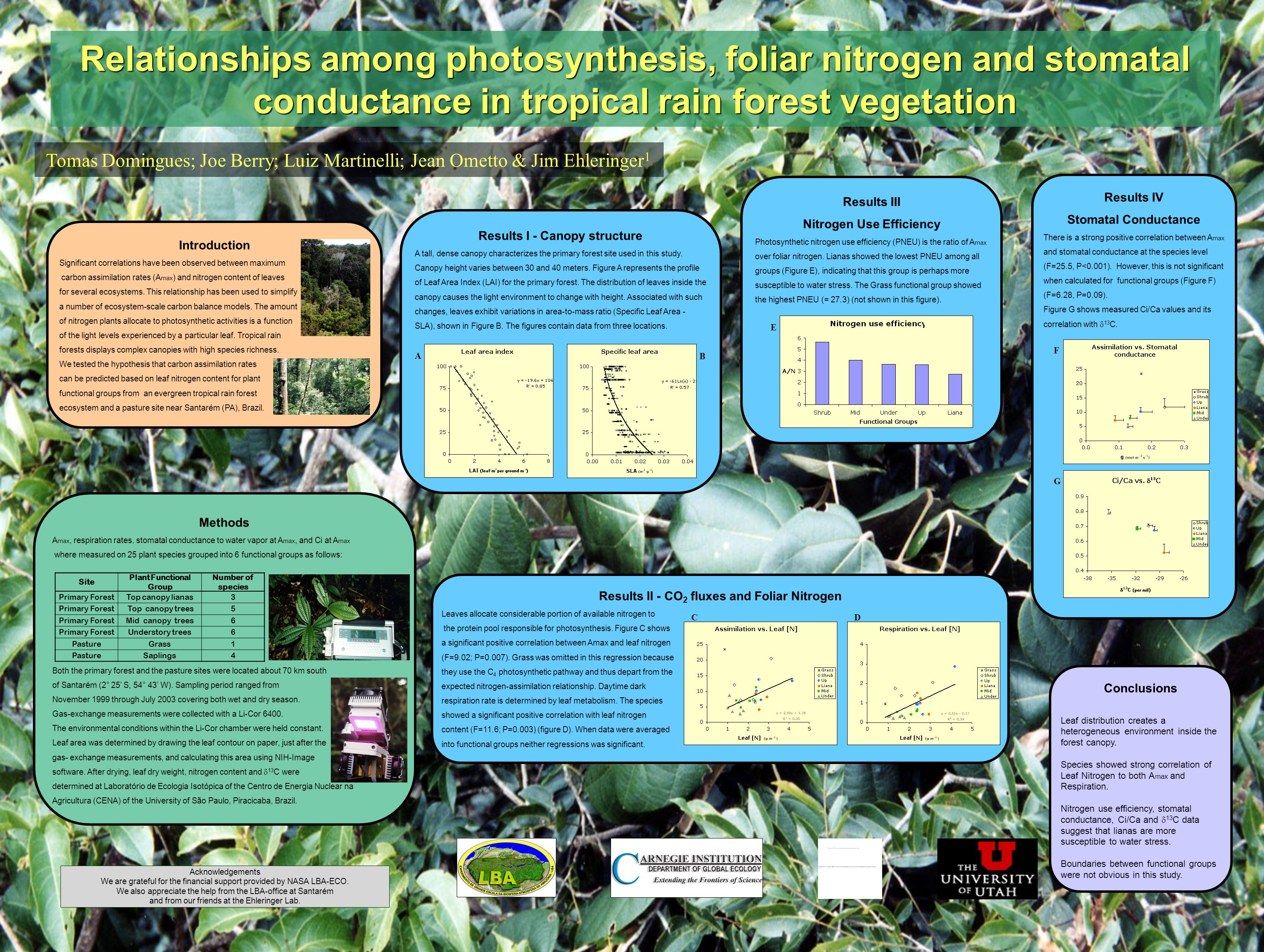 Relationships among photosynthesis, foliar nitrogen and stomatal conductance in tropical rain forest vegetation Tomas Domingues; Joe Berry; Luiz Martinelli; Jean Ometto & Jim Ehleringer 1 Introduction Significant correlations have been observed between maximum carbon assimilation rates (A max ) and nitrogen content of leaves for several ecosystems.