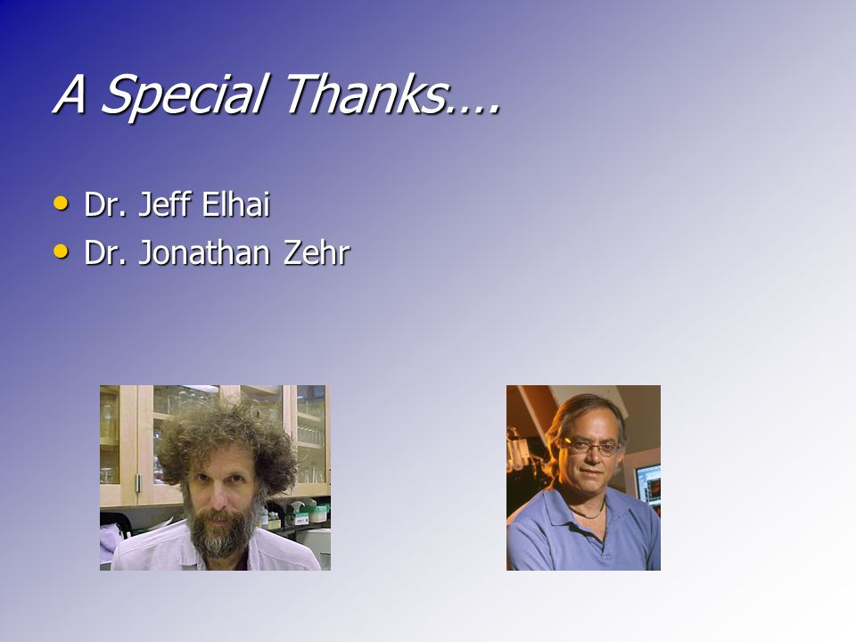 A Special Thanks…. Dr. Jeff Elhai Dr. Jeff Elhai Dr. Jonathan Zehr Dr. Jonathan Zehr