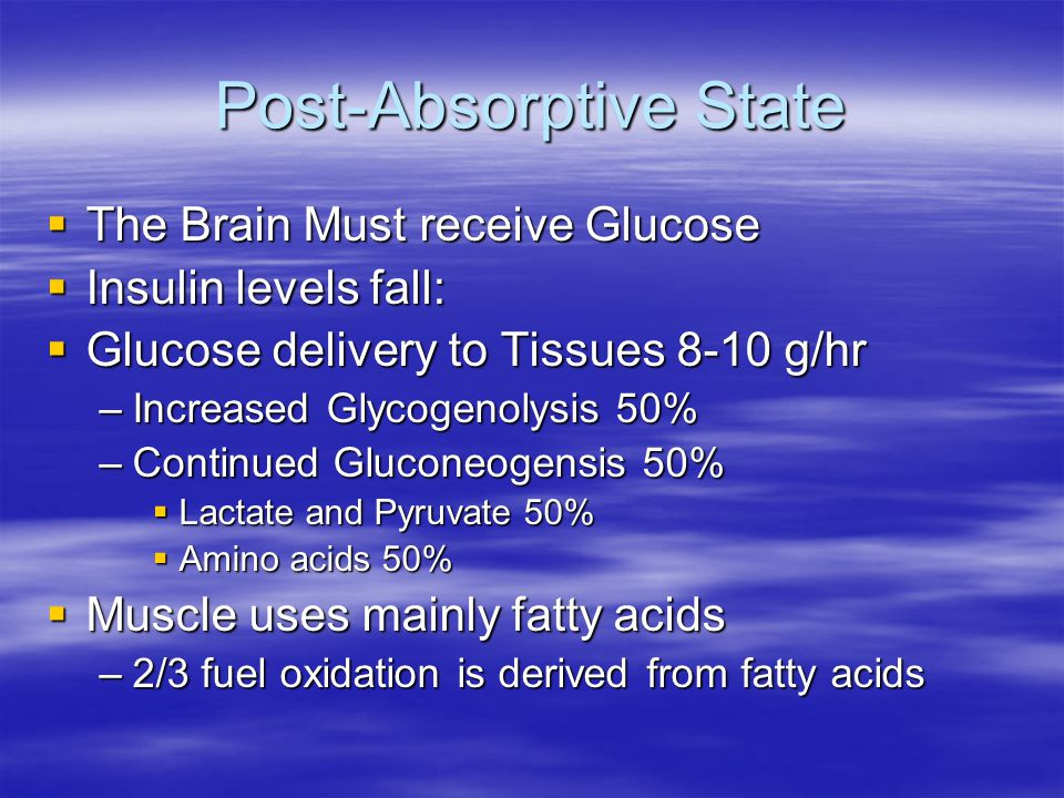 Post-Absorptive State  The Brain Must receive Glucose  Insulin levels fall:  Glucose delivery to Tissues 8-10 g/hr –Increased Glycogenolysis 50% –C