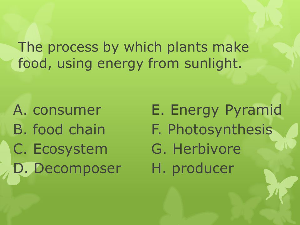 The process by which plants make food, using energy from sunlight. A. consumer B. food chain C. Ecosystem D. Decomposer E. Energy Pyramid F. Photosynt
