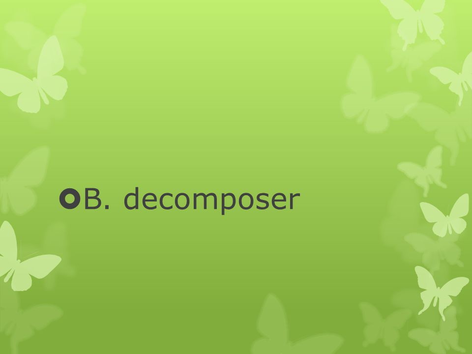  B. decomposer
