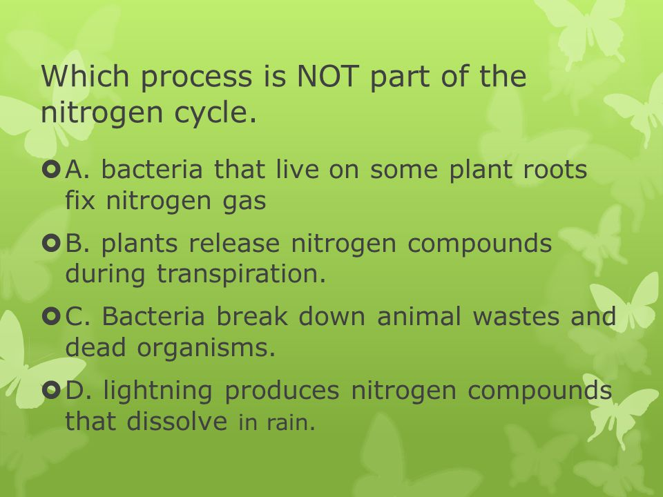 Which process is NOT part of the nitrogen cycle.  A. bacteria that live on some plant roots fix nitrogen gas  B. plants release nitrogen compounds d