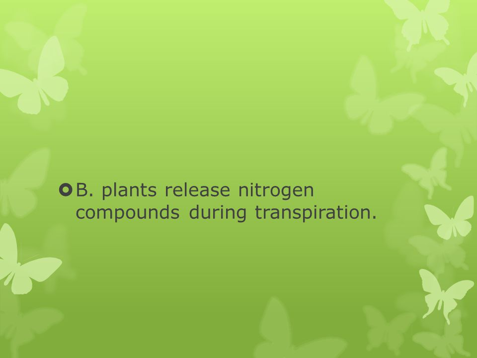  B. plants release nitrogen compounds during transpiration.