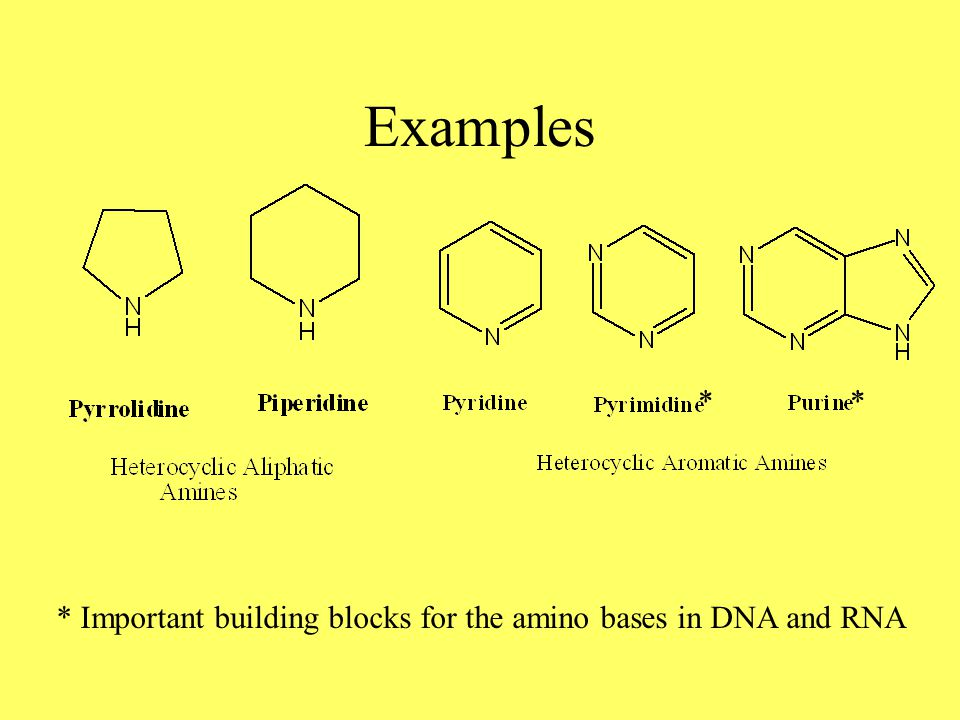 Examples * Important building blocks for the amino bases in DNA and RNA **