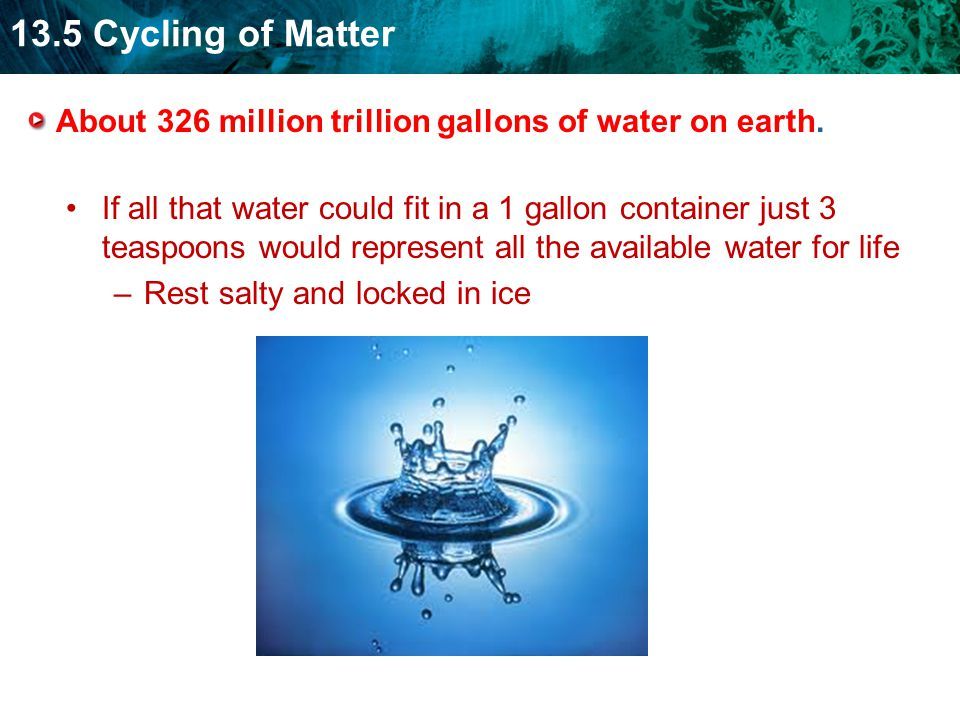 13.5 Cycling of Matter About 326 million trillion gallons of water on earth.