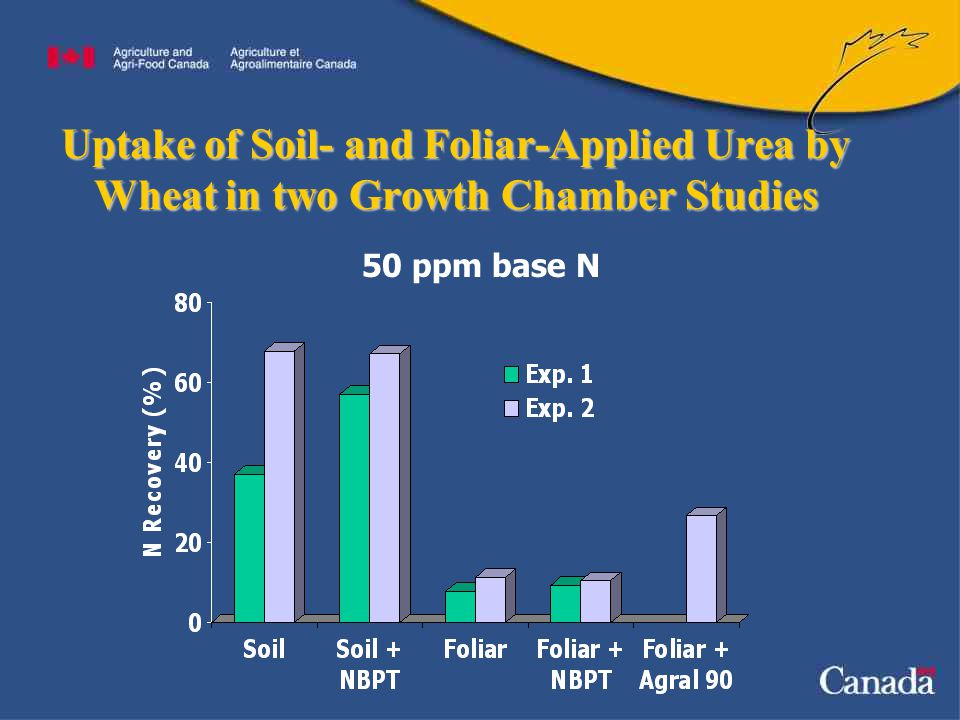 Uptake of Soil- and Foliar-Applied Urea by Wheat in two Growth Chamber Studies 50 ppm base N