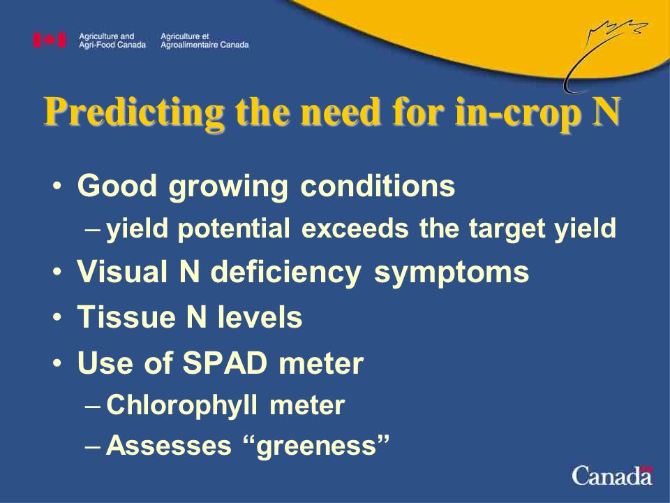 Predicting the need for in-crop N Good growing conditions –yield potential exceeds the target yield Visual N deficiency symptoms Tissue N levels Use of SPAD meter –Chlorophyll meter –Assesses greeness