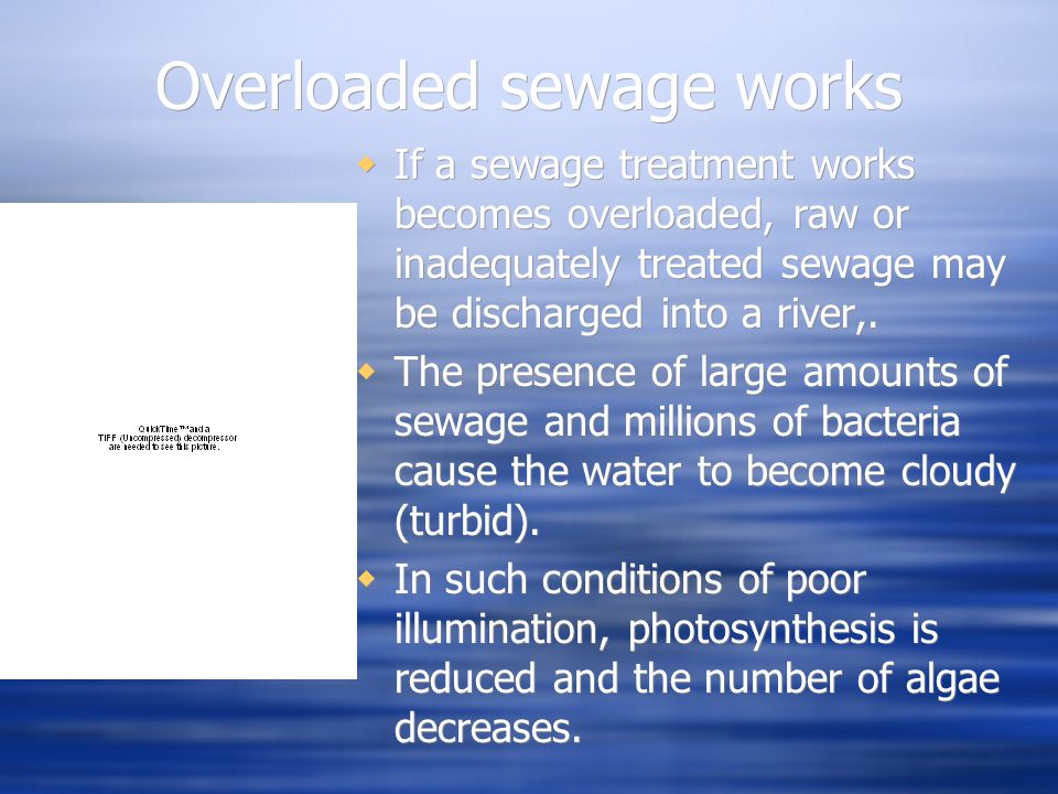 Sewage  Raw sewage contains many different organic chemicals such as protein and urea which are rich in nitrogen.