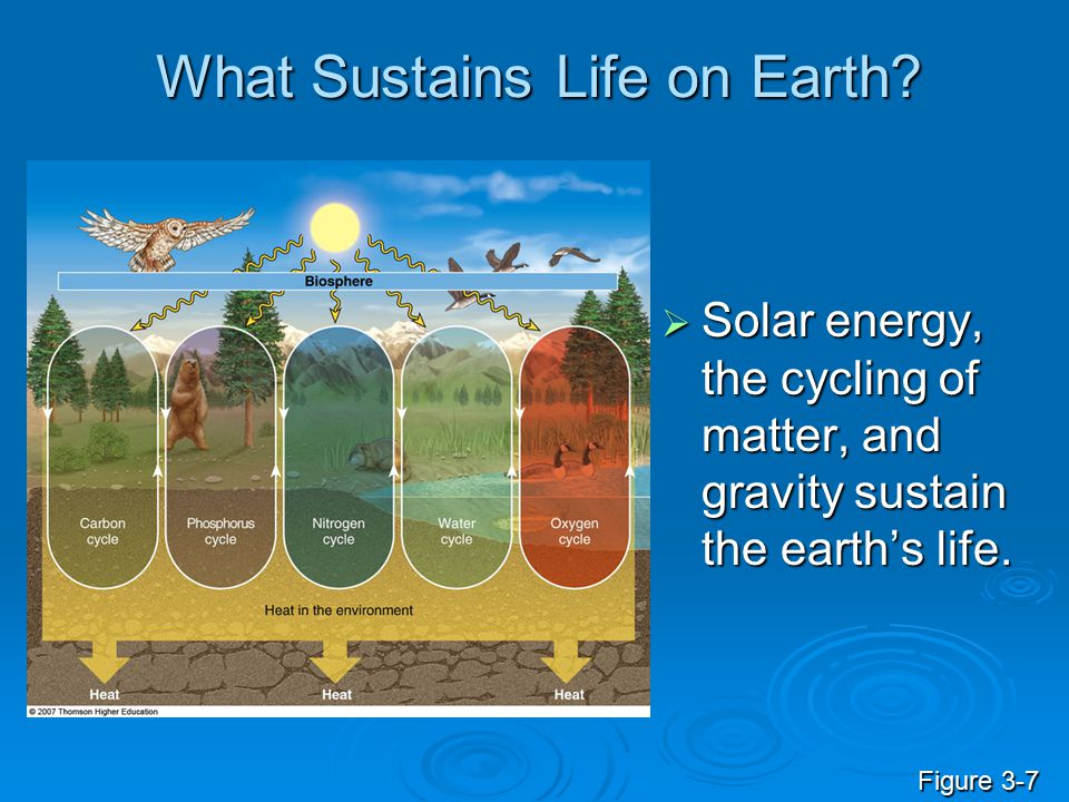 What Sustains Life on Earth?  Solar energy, the cycling of matter, and gravity sustain the earth's life. Figure 3-7