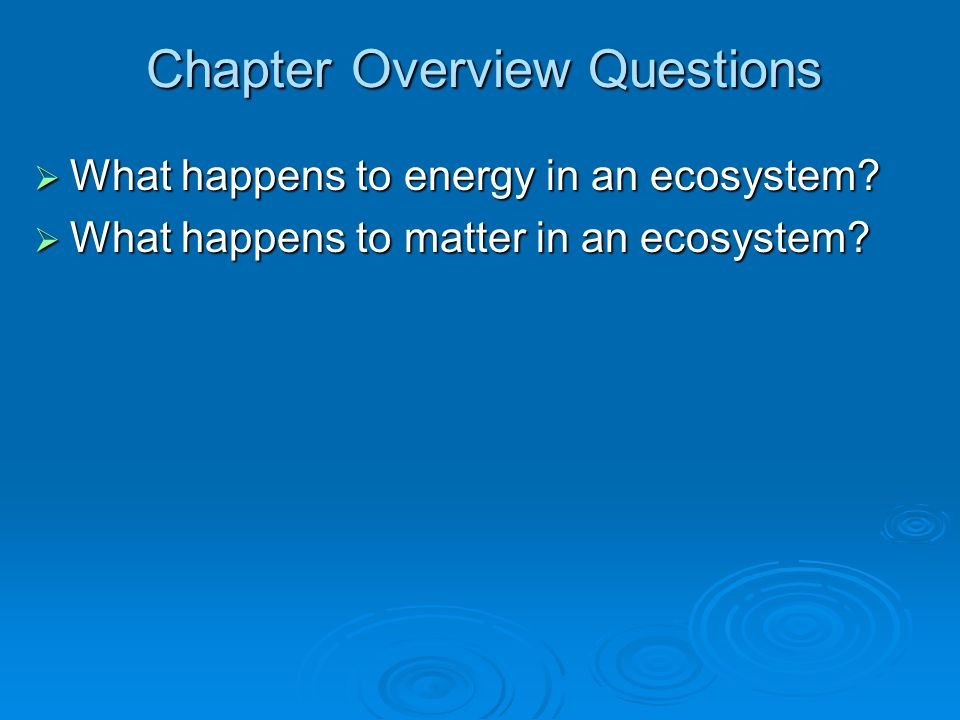 Chapter Overview Questions  What happens to energy in an ecosystem?  What happens to matter in an ecosystem?