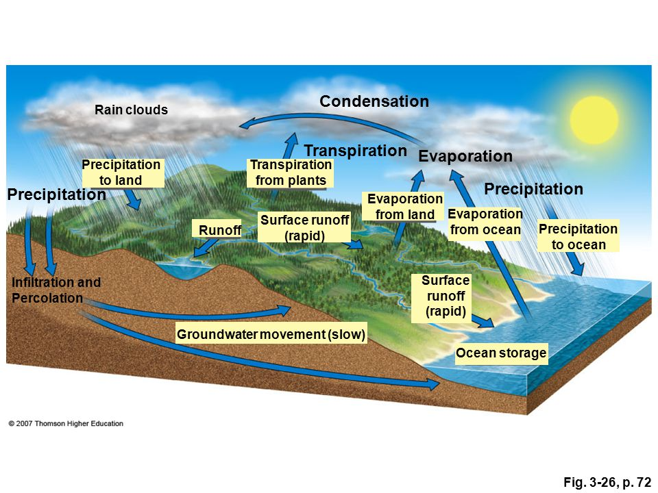 Fig. 3-26, p. 72 Precipitation Transpiration Condensation Evaporation Ocean storage Transpiration from plants Precipitation to land Groundwater moveme