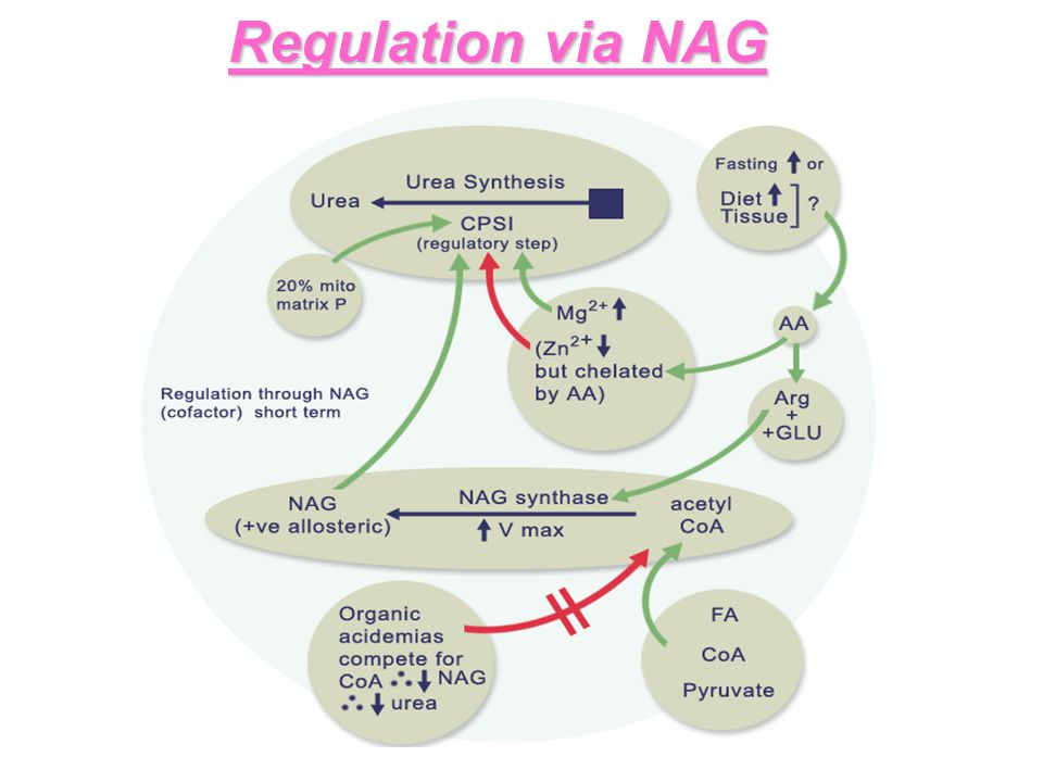 Regulation via NAG