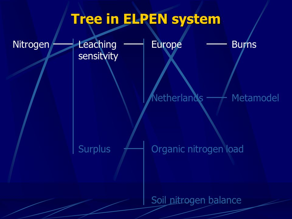 Tree in ELPEN system NitrogenLeaching sensitvity EuropeBurns Surplus Netherlands Organic nitrogen load Soil nitrogen balance Metamodel