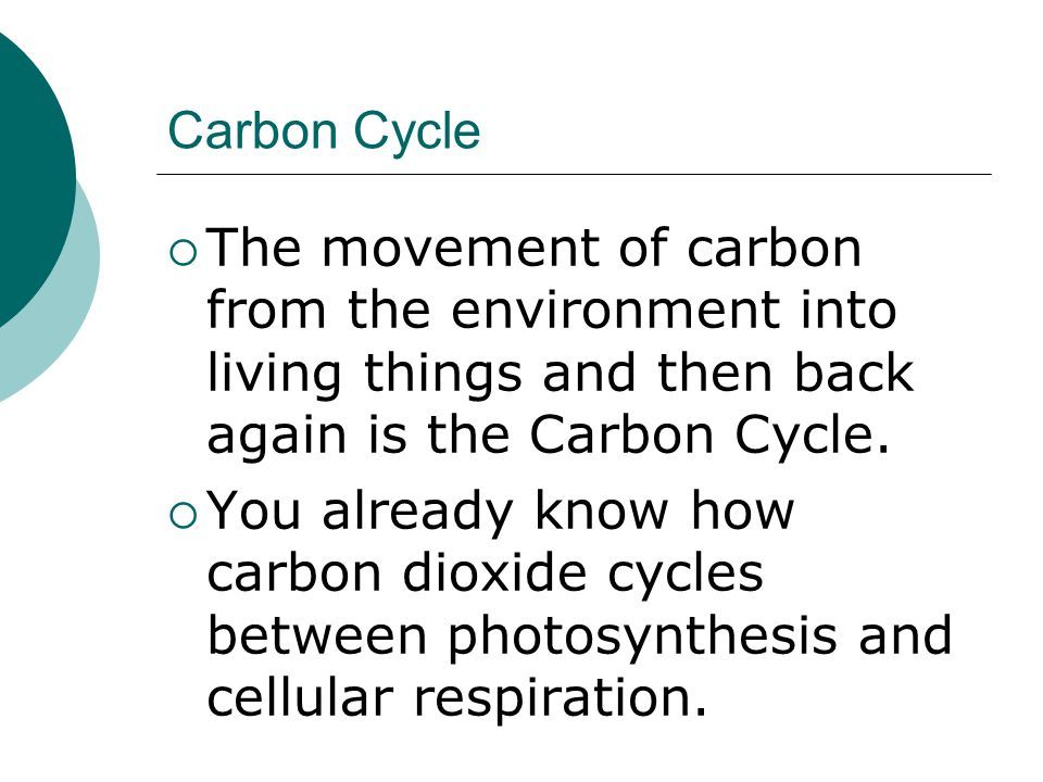 Carbon Cycle  The movement of carbon from the environment into living things and then back again is the Carbon Cycle.  You already know how carbon d
