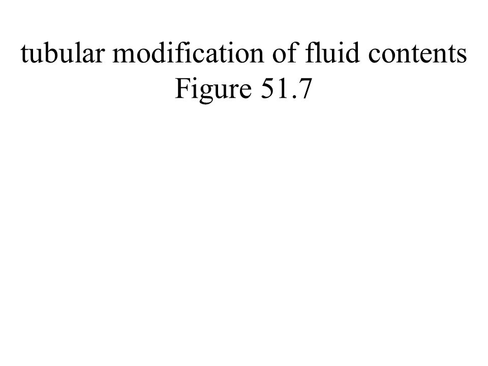 tubular modification of fluid contents Figure 51.7