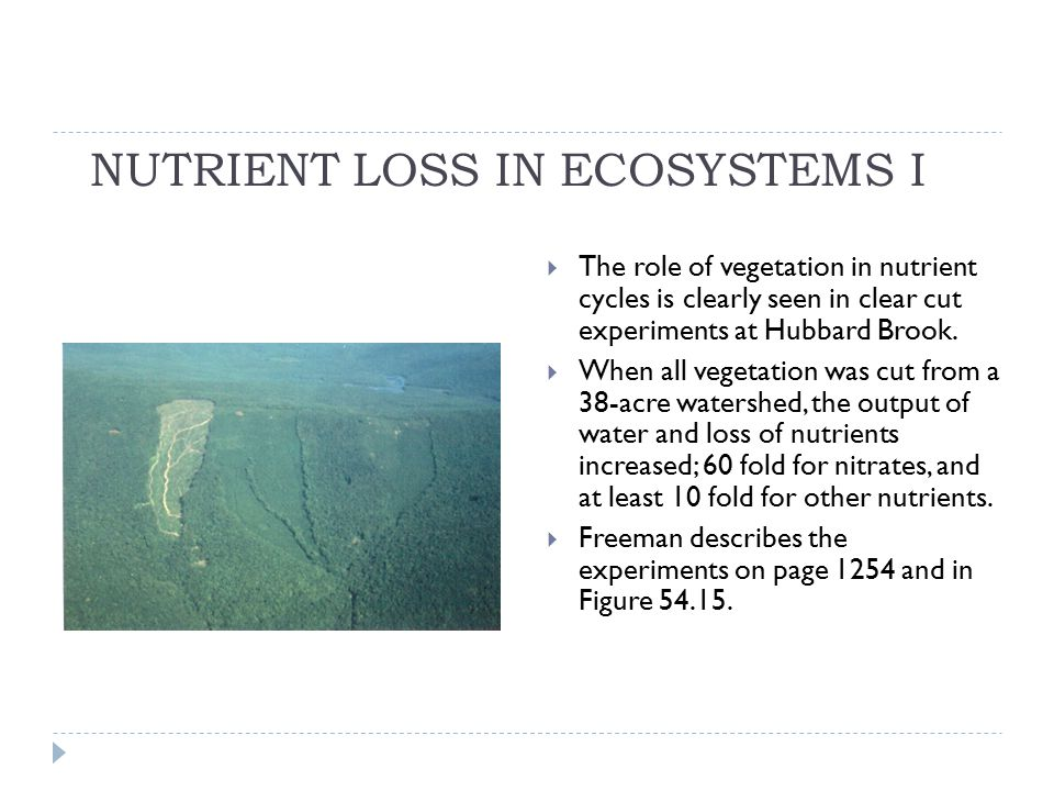 NUTRIENT LOSS IN ECOSYSTEMS I  The role of vegetation in nutrient cycles is clearly seen in clear cut experiments at Hubbard Brook.  When all vegeta