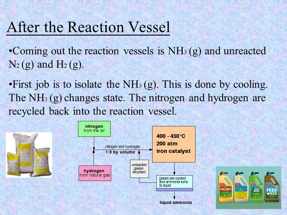 After the Reaction Vessel Coming out the reaction vessels is NH 3 (g) and unreacted N 2 (g) and H 2 (g).