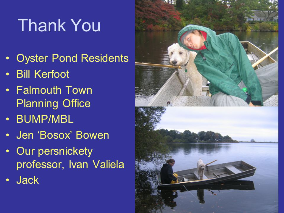 Thank You Oyster Pond Residents Bill Kerfoot Falmouth Town Planning Office BUMP/MBL Jen 'Bosox' Bowen Our persnickety professor, Ivan Valiela Jack