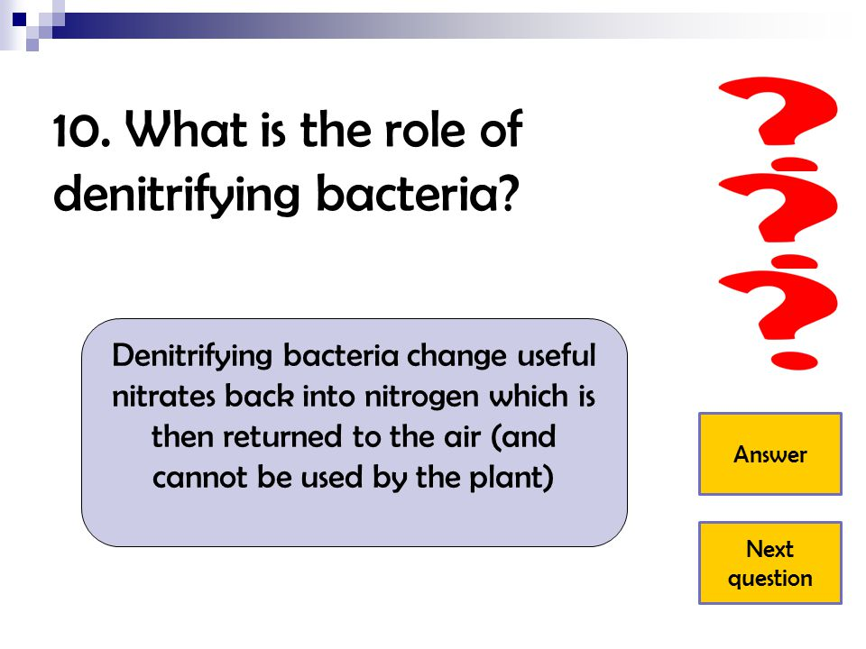 10. What is the role of denitrifying bacteria? Denitrifying bacteria change useful nitrates back into nitrogen which is then returned to the air (and