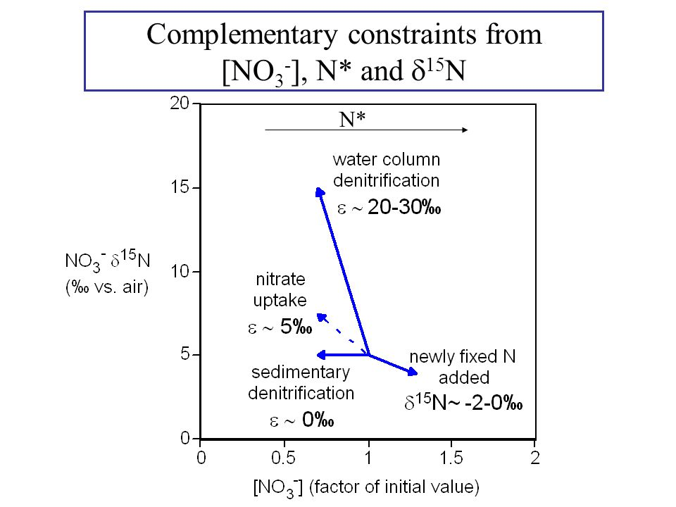 Complementary constraints from [NO 3 - ], N* and  15 N N*