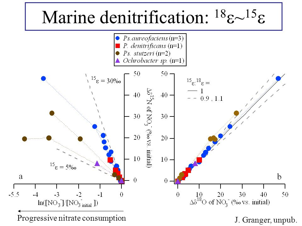 J. Granger, unpub. Marine denitrification: 18  ~ 15  Progressive nitrate consumption