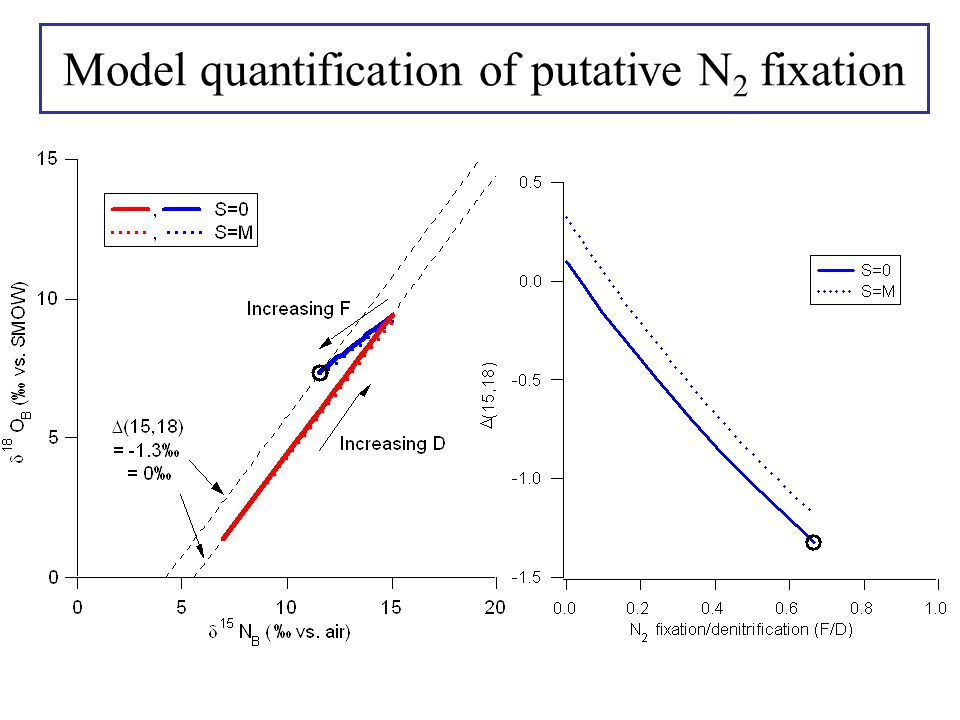 Model quantification of putative N 2 fixation