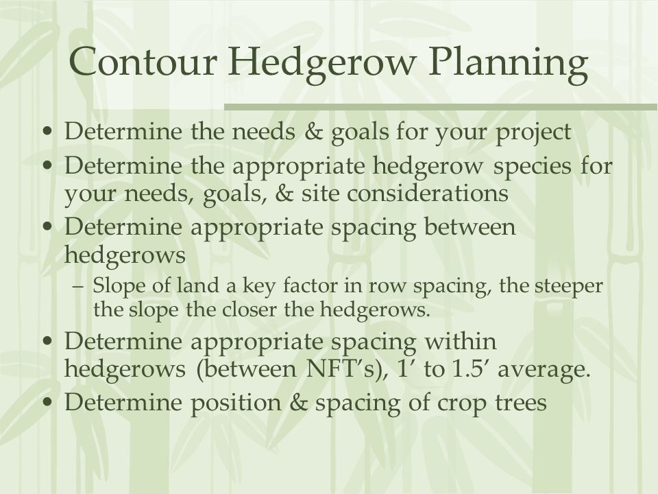 Contour Hedgerow Planning Determine the needs & goals for your project Determine the appropriate hedgerow species for your needs, goals, & site considerations Determine appropriate spacing between hedgerows –Slope of land a key factor in row spacing, the steeper the slope the closer the hedgerows.