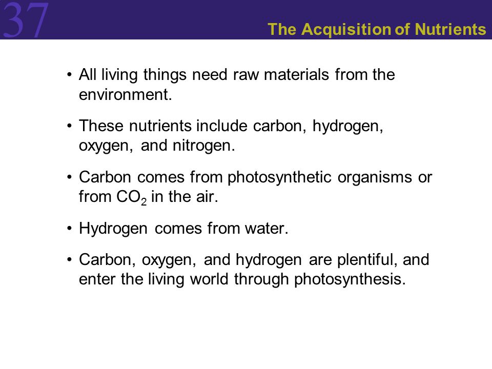 37 The Acquisition of Nutrients All living things need raw materials from the environment.