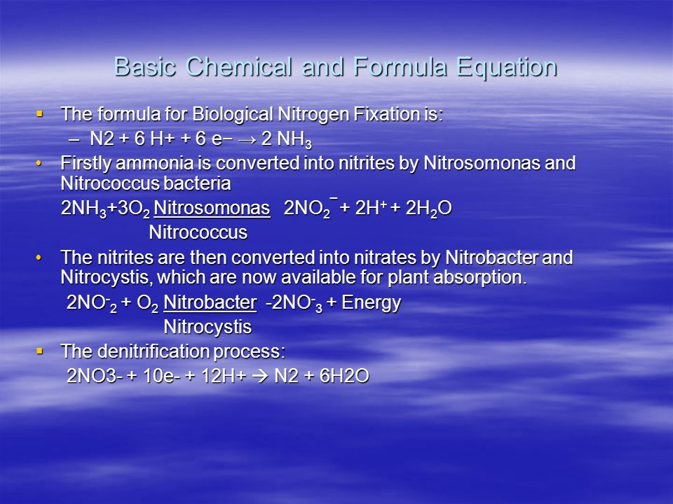 Basic Chemical and Formula Equation  The formula for Biological Nitrogen Fixation is: –N2 + 6 H+ + 6 e− → 2 NH 3 Firstly ammonia is converted into ni