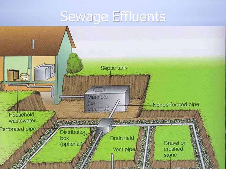 Sewage Effluents