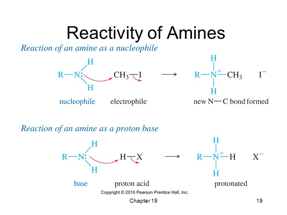 Chapter 1919 Reactivity of Amines