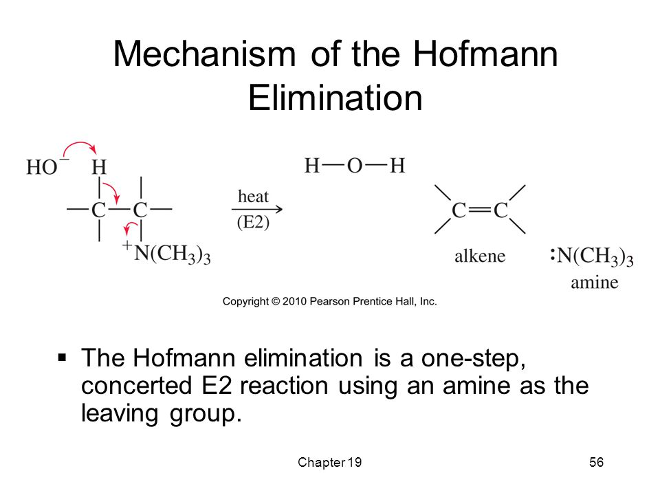 Chapter 1956 Mechanism of the Hofmann Elimination  The Hofmann elimination is a one-step, concerted E2 reaction using an amine as the leaving group.