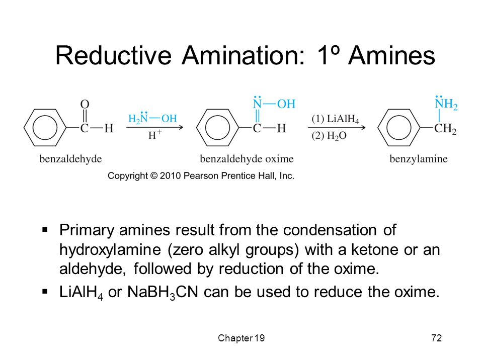 Chapter 1972 Reductive Amination: 1º Amines  Primary amines result from the condensation of hydroxylamine (zero alkyl groups) with a ketone or an ald